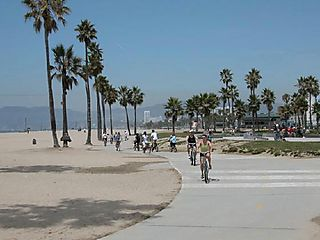 1058392-Cycling_on_Venice_Beach-Venice