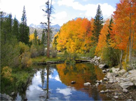 Lake Sabrina, Fall