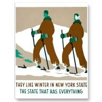 New-york-state-winter
